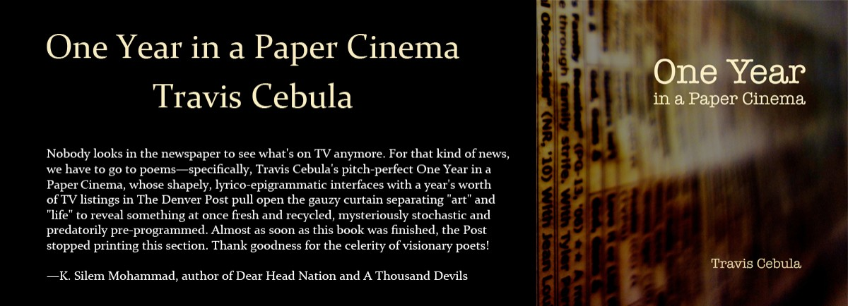 One Year in a Paper Cinema by Travis Cebula
