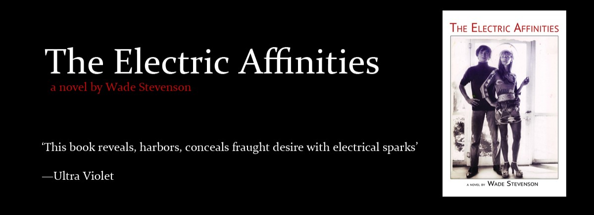 The Electric Affinities by Wade Stevenson